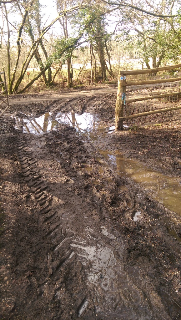 Just one of many very deep and wide puddles. Thank goodness for waterproof boots!