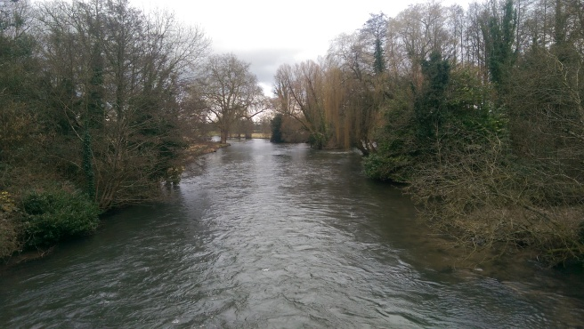 The River Test at Romsey